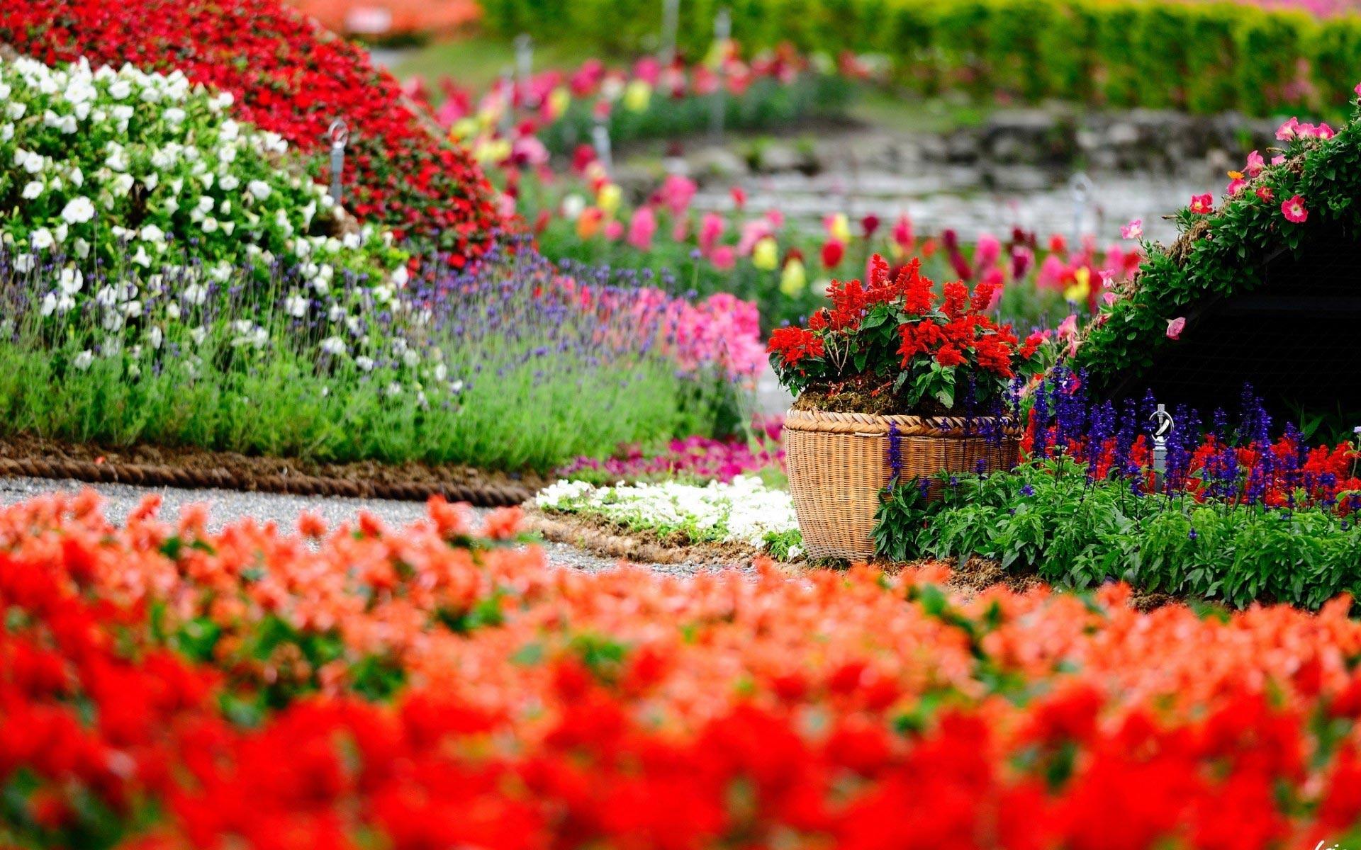 Arredo Terrazzi Ancona Torresi Garden Progettazione Realizzazione Manutenzione Giardini
